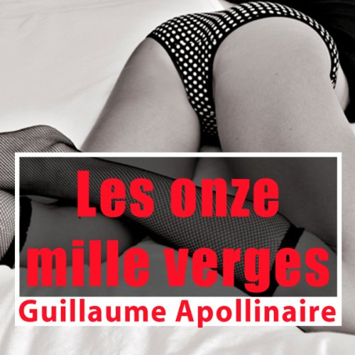 Les onze mille verges cover art