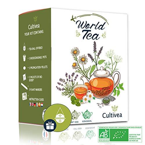 Cultivea World- Welt-Tee Anzuchtset - Owngrown - 100% Bio-Saatgut - Das perfekte Geschenk - Geschenkidee (Gartentee, Minze, Kamille, Agastache, Grüner Anis) mit gratis Tee Ei