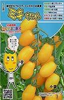 【種子】 ミニトマト ミキちゃん トキタ種苗のタネ 期限切れ(2021年10月)間近のため売り尽くしセール!