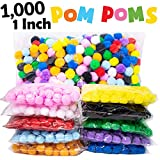 1000 Pieces 1 Inch Pom Poms for Crafts 10 Assorted Colors Separated by Bag Pom Poms Best Puff Balls