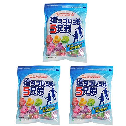 3袋まとめ買い ランドアート 塩タブレット5兄弟 (530g x 3袋セット) 塩飴 塩あめ 塩タブレット5兄弟