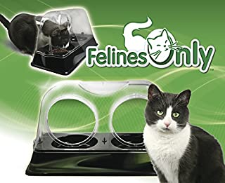 cat food dish that keeps dogs out