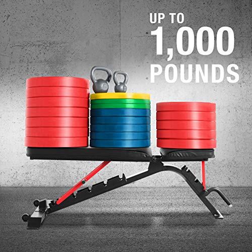 CAP Barbell Strength FID Workout Bench | Flat Incline Decline Positions, Black/Red