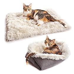 Best Cat Bed for Pixie Bob Cat