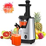 Homgeek Blender Smoothie Maker for Shakes and Smoothies, (Slow Juicer)