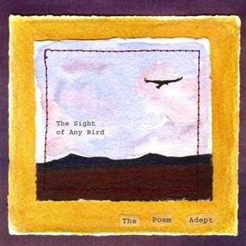 THE SIGHT OF ANY BIRD