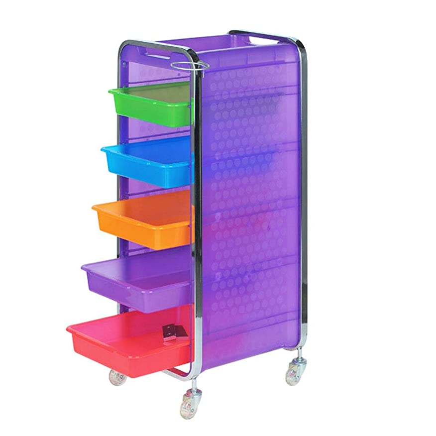 接続された複雑なまぶしさサロン美容院トロリー美容美容収納カート6層トレイ多機能引き出し虹色,Purple,B