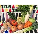 コロナに負けるな! 野菜セット 旬な野菜おまかせ 新鮮 野菜詰め合わせ 6品(6品以上詰める時も!)