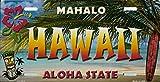 Inga Hawaii State Background Placa de Metal para Placa de matrícula de 15,24 x 30,48 cm