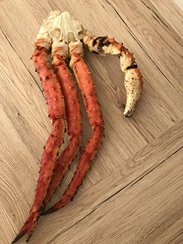 Königskrabbe / King Crab, Beine u. Scheren, Wildfang, Norwegen 5kg