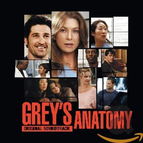 GreyS Anatomy (Anatomia De Grey)