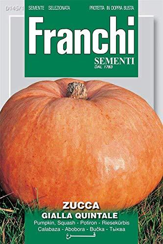 Samen Franchi von Italien - Kürbis - quintale Yellow Seed - Seeds
