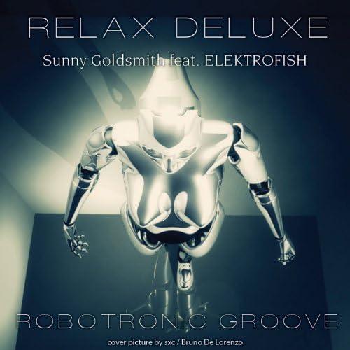 Sunny Goldsmith feat. ElektroFish