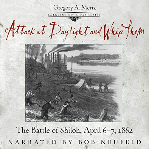 Attack at Daylight and Whip Them audiobook cover art