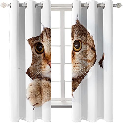 SHJIA Auf Balkonen Und Gärten Können Moderne Und Einfache Gardinen Mit Katzenmotiven Für Schlafzimmer, Keine Perforation Und Einfache Installation Von Verdunkelungsvorhängen, Wärmeisolierung Und Erk