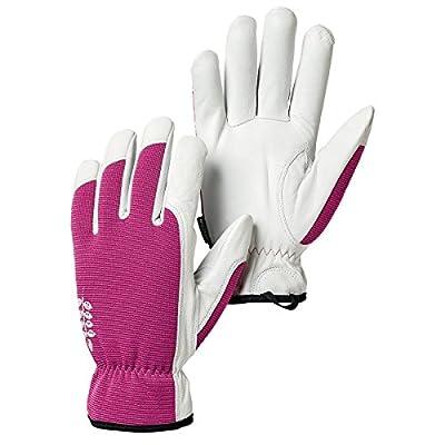 Hestra 73180-850-06 Kobolt Garden Gloves
