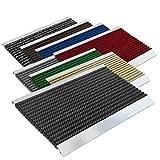 Floordirekt PRO Repräsentative Fußmatte Profi Brush - Testurteil Sehr Gut - Schmutzfangmatte mit Alu Rahmen für außen und innen - Verschiedene Bürsten Farben und Größen (50x80cm Schwarz)
