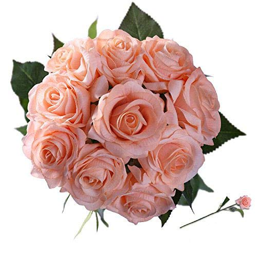 StarLifey Seda Flores Artificiales Rosa 10 Jefes de Seda Artificial Flores Falsas Tan Natural (Champagne)