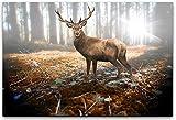 bestforhome 120x80cm Leinwandbild Hirsch im Wald in der
