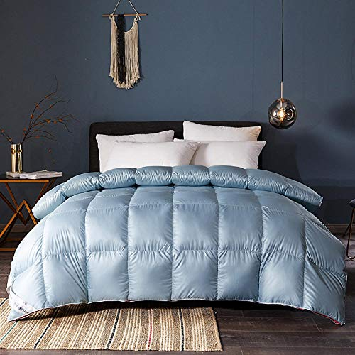 CHOU DAN Twin Duvet Insert,White Goose Down And White Duck Down 2020 New Three-Dimensional Quilt Thickened Warm Winter Quilt-Blue_150x200cm3 Kg