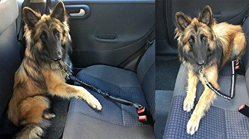 Happilax Cintur/ón de seguridad para perro en el coche ajustable y extensible