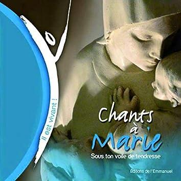 Sous ton voile de tendresse - Chants à Marie