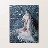 Head of Great White Shark 500 Pieces Jigsaw Puzzle, Puzzles for Adults and Kids Jigsaw Puzzle Intellectual Decompressing Fun Family Game Toys
