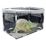 HJKND Caja de cría de Reptiles, Caja de alimentación acrílica para Lagarto araña, Rana, grillo, Caja de alimentación para Tortugas, contenedor para incubar en Jaula de Reptiles