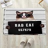 Alfombrilla de baño antideslizante, para baño o ducha,Cat Lover Decor, Bad Gang Cat in Jail Kitty bajo arresto Prisi, alfombra de suelo absorbente, para sala de estar, sofá, cojín, caucho, 60 x 100 cm