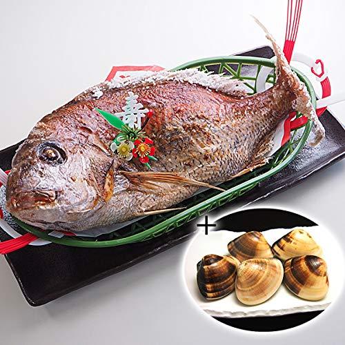 築地魚群 祝い鯛 焼き鯛 1kgサイズ 国産天然真鯛 +はまぐり500gセット