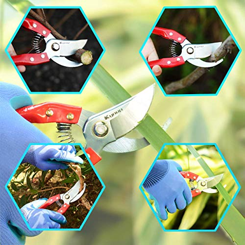 Kynup 3Packs Garden Shears, Garden Tools for Shears Pruner Stainless Steel Blades Handheld Pruners Set with Gardening Gloves