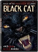 Black Cat by Shawna Erickson
