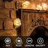 CozyHome LED Lichterkette Rosen weiß – 5m strombetrieben | 20 Blumen warmweiß |...