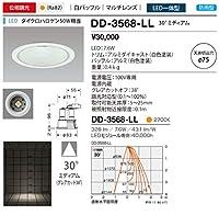 山田照明/ダウンライト 軒下照明 DD-3568-LL 電気工事必要型