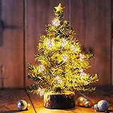 Cadena de luces de 2 m con 20 ledes de arco iris para niños, guirnalda de luces con batería (3AA) con luz cálida, decoración para habitaciones, cortinas, Navidad, fiestas, jardín (unicornio)