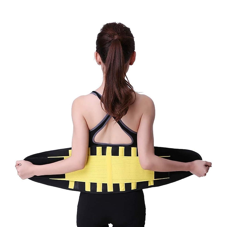 受動的ナプキン開業医フィットネスベルト ネオプレンで作られ、熱とバーンズ脂肪を生成するには、脂肪や排泄の毒素を取り除き、運動中に腰を保護し、けがを防止します (Size : XXL)