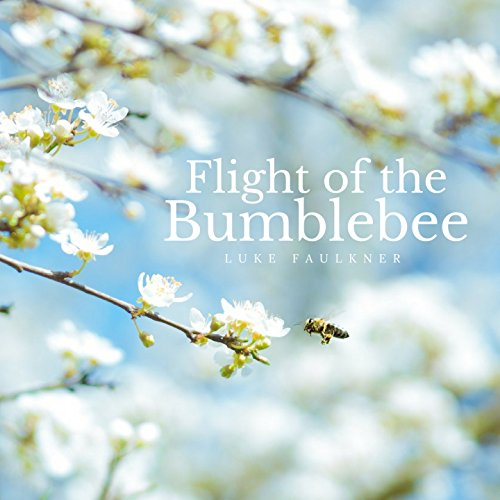 Flight of the Bumblebee (Arr. for Piano)