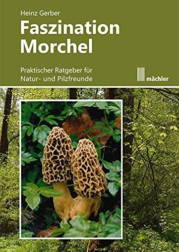 Faszination Morchel: Praktischer Ratgeber für Pilz- und Naturfreunde