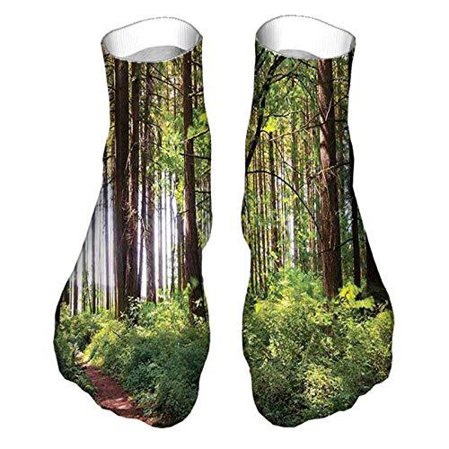 Calcetines unisex divertidos coloridos con diseño estampado de caminos en un bosque sombrío de arbustos y troncos gruesos de hierba