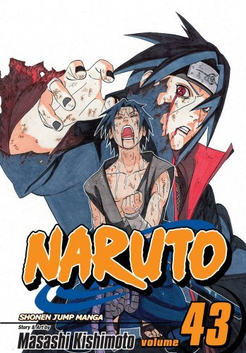Naruto, Vol. 43: The Man with the Truth (Naruto Graphic Novel) (English Edition)