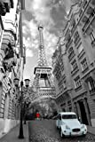1art1 Eiffelturm - Paris, Frau In Rot, Ente In Blau Poster