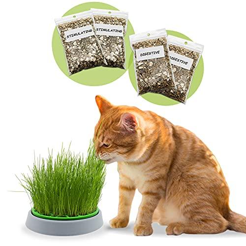R&R SHOP - Double Seeds Katzenminzenset - Keimtopf, 2 Arten Katzenminze, Stimulans und Verdauungstrakt, 4 Beutel Samen und Substrat, geeignet für alle Katzen