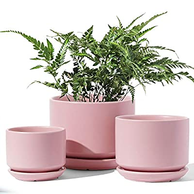 LE TAUCI Indoor Planter, 4.5+5.3+6.5 Inch Ceramic Plant Pots with Drainage Hole, Round Flower Planter Pot for Plants with Saucer/Tray, Small to Large Sized, Cream White, Set of 3