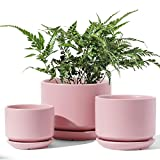 LE TAUCI Indoor Planter, 4+5.5+6.6 Inch Ceramic Plant Pots with Drainage Hole, Round Flower Planter Pot for Plants with Saucer/Tray, Small to Large Sized, Aqua, Set of 3