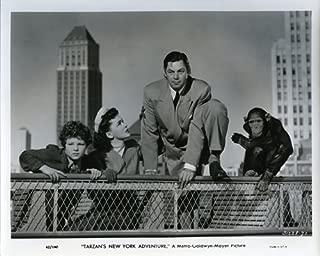 Tarzan's New York Adventure Johnny Weissmuller in suit,Cheetah,Jane & Boy photo