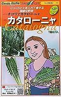 【種子】 Gusto Italia リーフチコリ チコリアカタローニャ カタローニャ トキタ種苗のタネ