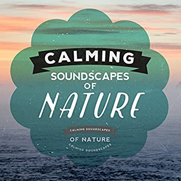 Calming Soundscapes of Nature