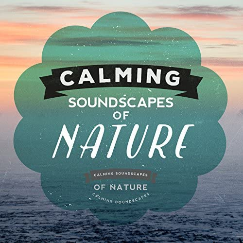 The Calming Sounds of Nature, Sounds of Nature! & Soundscapes!