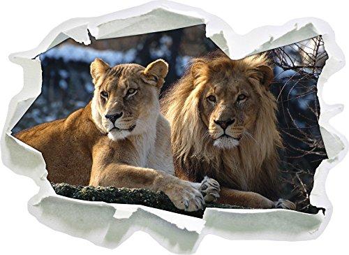 interessiertes Löwenpaar, Papier 3D-Wandsticker Format: 62x45 cm Wanddekoration 3D-Wandaufkleber Wandtattoo