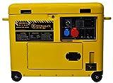 Zoom IMG-1 generatore di corrente diesel 6
